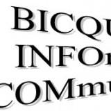 BIC 2020-003