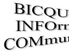 BIC 2020-004